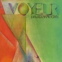 David Sanborn「Voyeur」